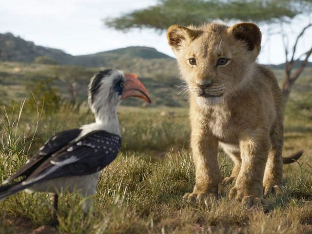 Scene From Disney's The Lion King (2019)