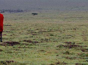 Walking with the Maasai – week 1