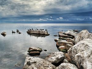 View of Lake Victoria from Rubondo Island.