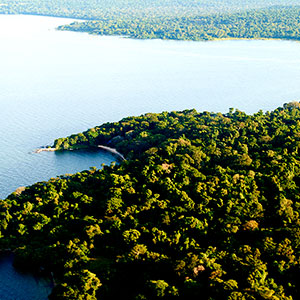 Serengeti Region - Rubondo Island.