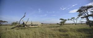 Nomadic camp location