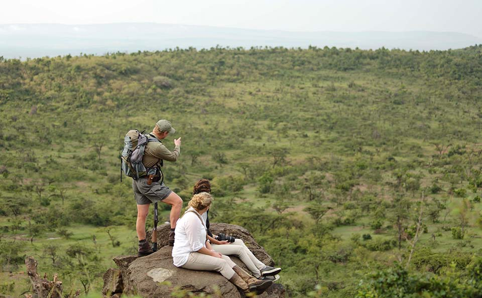 walking safari with guide and guests