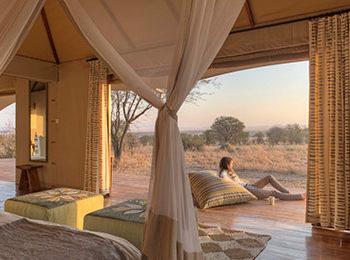Sayari Camp – Our Star of the Northern Serengeti