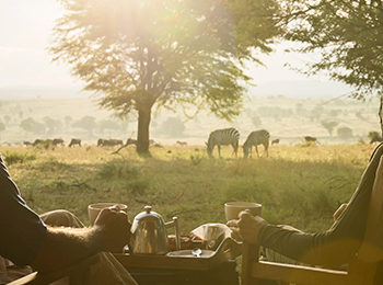 Where to see The Great Migration