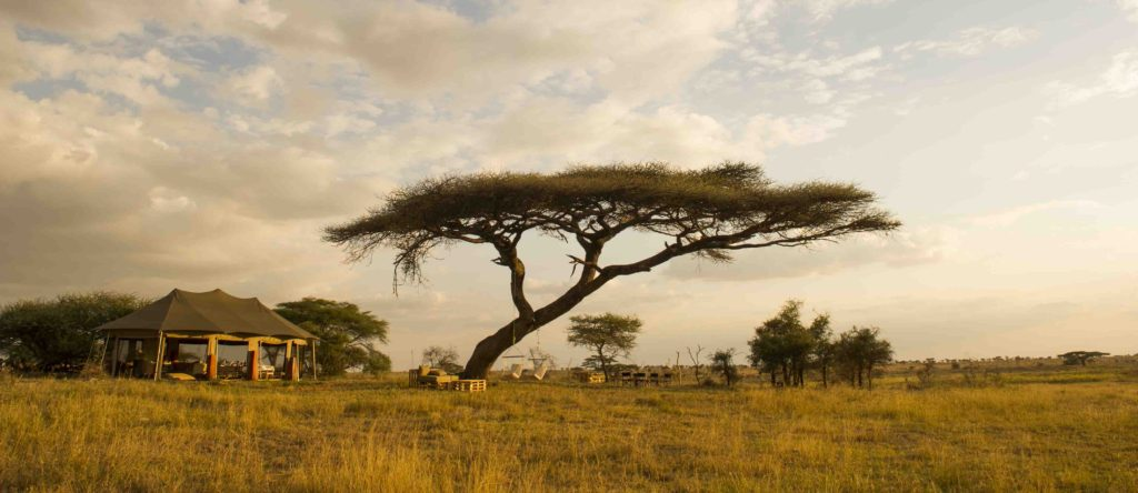 Exterior view of Asilia Africa's Namiri Plains Camp, Kenya