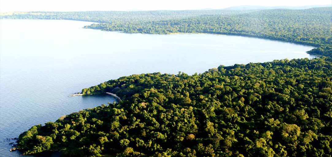 Rubondo Island is for those seeking the thrill of adventure in a truly wild area,