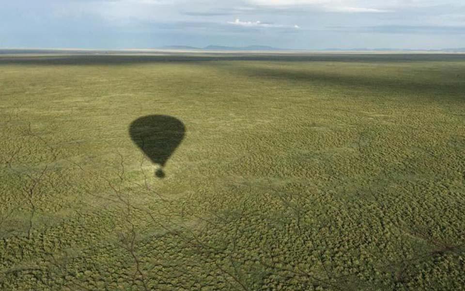 balloon safari over the grass plains of the serengeti