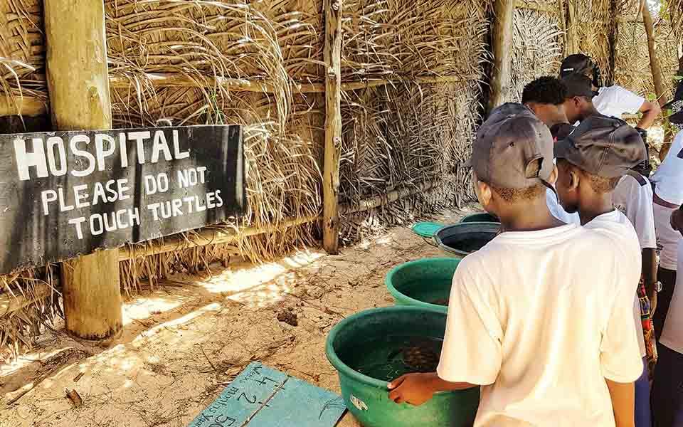 twende baharini visit to turtle centre in Matemwe