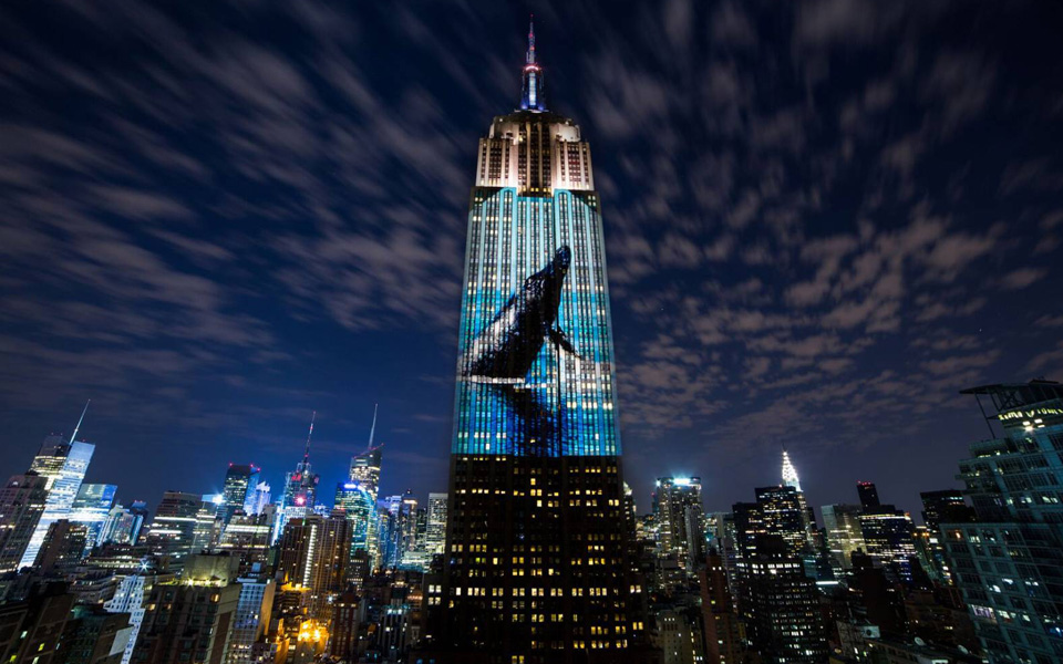 Racing Extinction. Credits: Art Net