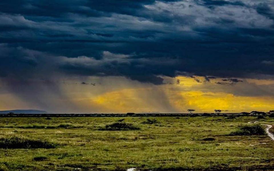 rain-in-ndutu-area-east-africa-safari