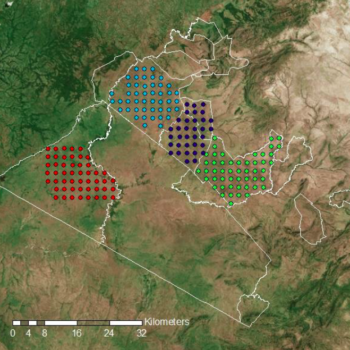 Camera Traps Deployed In Greater Mara: The 2018 Report