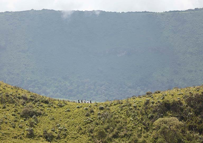 The-ngorongoro-crater-walking-in-the-Highlands