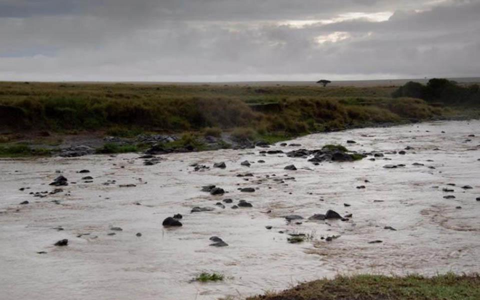 mara-river-africa
