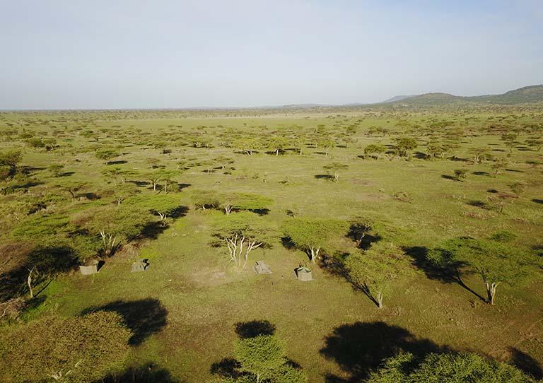 wayo-walking-asilia-adventures-view-of-the-plains