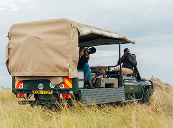 Safari Gadgets – What To Bring Along On Safari