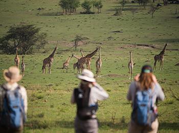 what-to-pack-asilia-adventures-walking-safari-naboisho-conservancy-on-foot-wildlife-giraffe