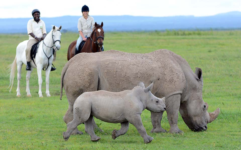 horse-riding- Ol-pejeta-bush-camp-kenya-east-africa-slow-travel-asilia-africa