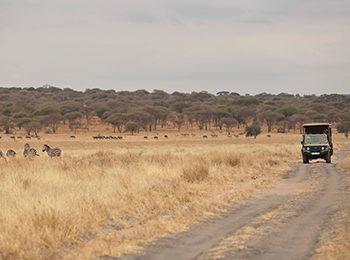 Responsible Tourism Tanzania: Asilia's SEED Accreditation