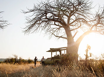 Ravishing Ruaha: Tanzania's Best Kept Secret
