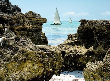 Matemwe By The Month: An Overview Of Zanzibar's Seasons