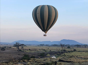Why You Need to Book a Hot-Air Balloon Safari