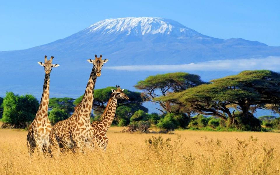 Mount Kilimanjaro. Photo credits: Micato