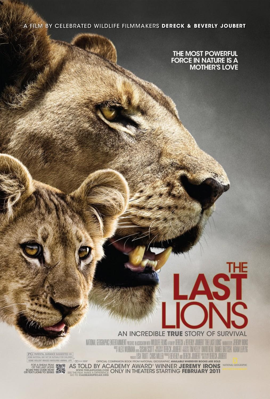top 10 lion movies asilia africa