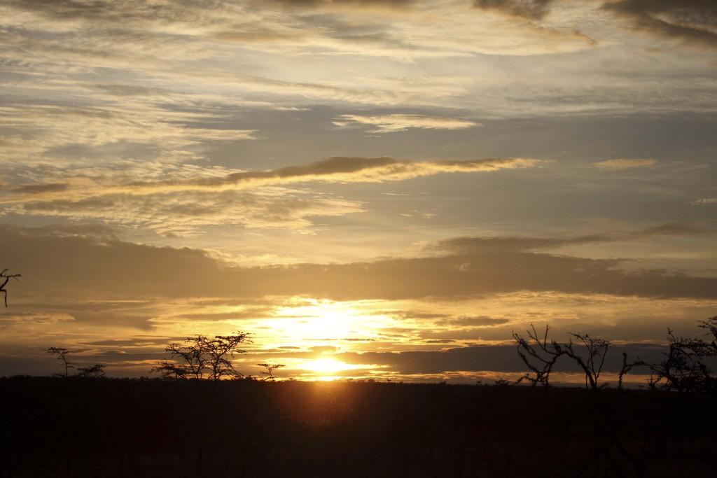 Naboisho Sunset