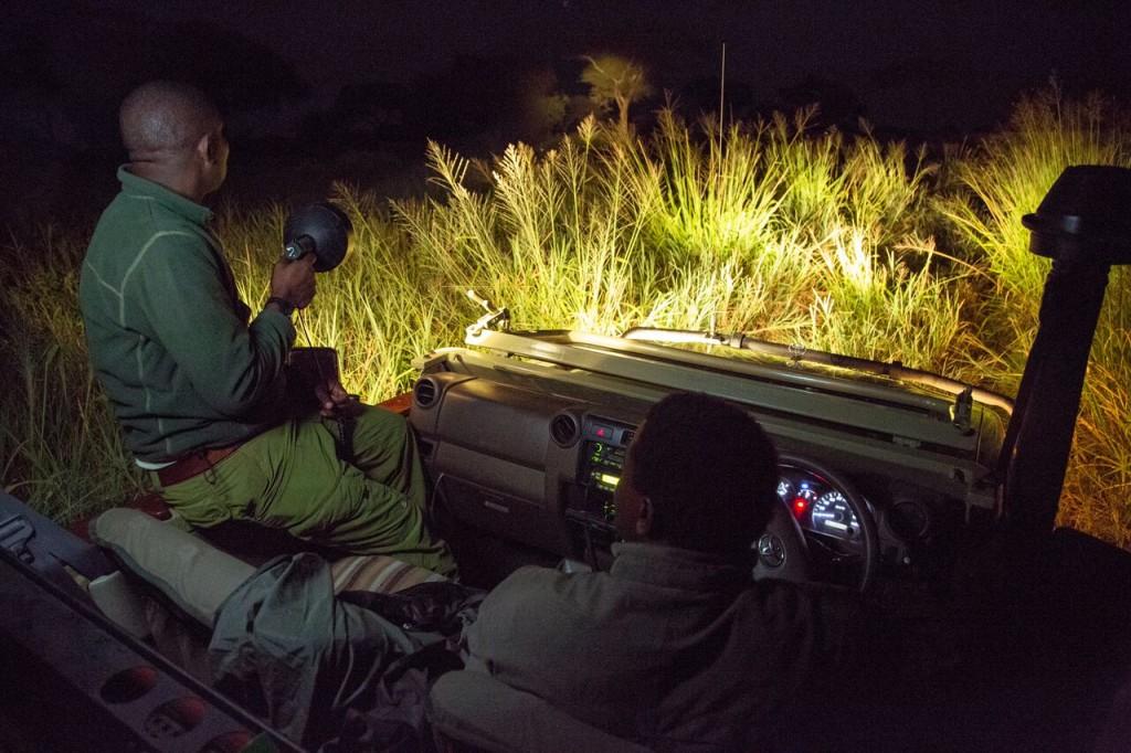 Night Drive Safari - Game Drive