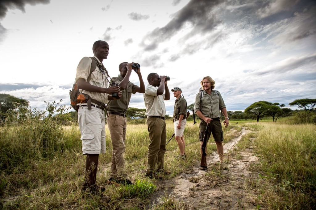 Walking Safari - Guides