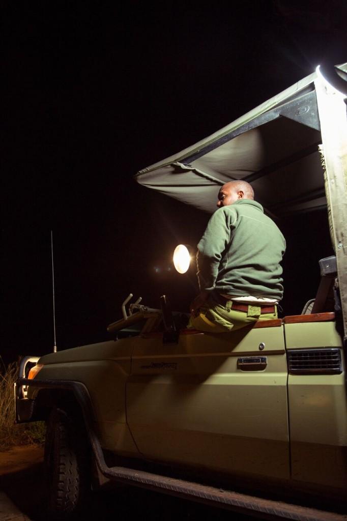 Night Drive Safari - Spotlight