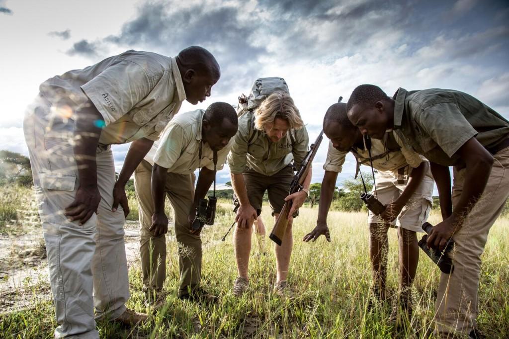 Walking Safari - Looking for Clues